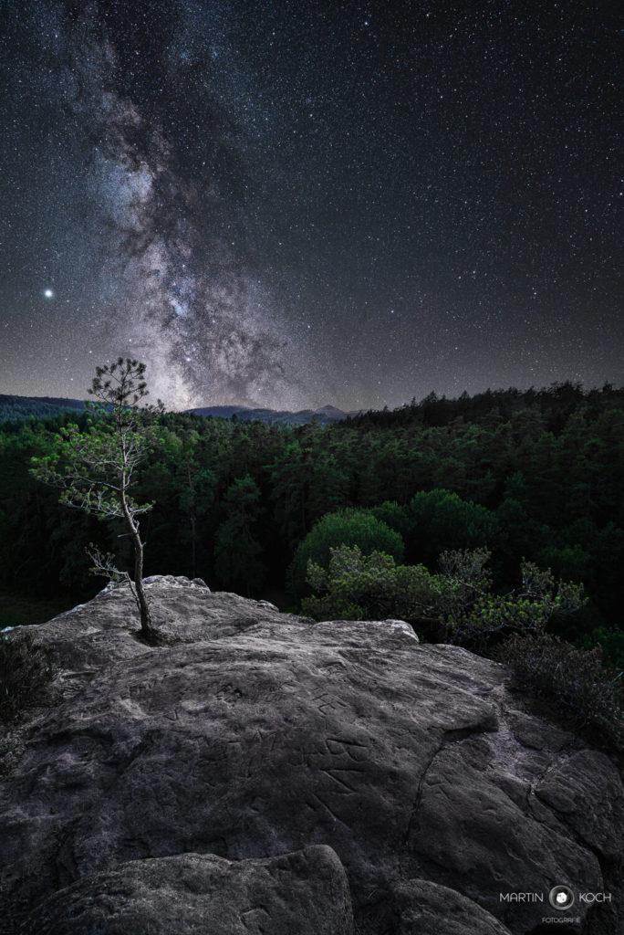 Milchstraße Pfälzer Wald