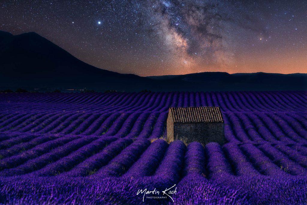 Fotograf des Universums Martin Koch Milchstraße Lavendel Valensole Provence